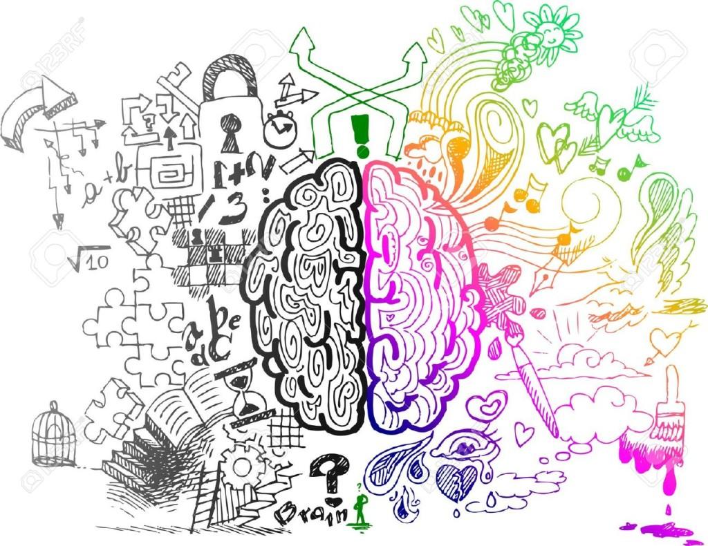 A evolução do cérebro